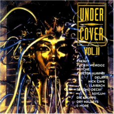 Under Cover, Vol. II mp3 Compilation by Various Artists