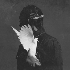 King Push - Darkest Before Dawn: The Prelude mp3 Album by Pusha T