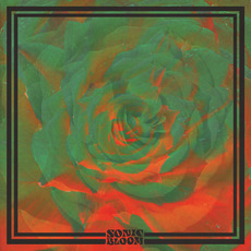 Sonic Bloom mp3 Album by Night Beats