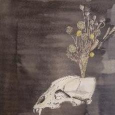 Seasonal Hire mp3 Album by Steve Gunn & The Black Twig Pickers
