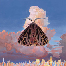 Moth mp3 Album by Chairlift