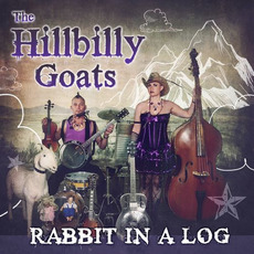 Down Foggy Mountain by The Hillbilly Goats