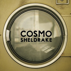 The Moss mp3 Single by Cosmo Sheldrake