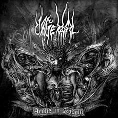 Aeons in Sodom mp3 Album by Urgehal