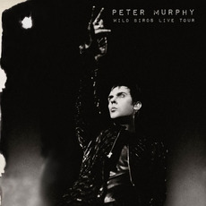Wild Birds Live Tour mp3 Live by Peter Murphy