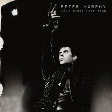 Wild Birds Live Tour by Peter Murphy