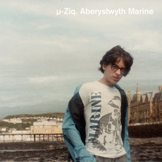 Aberystwyth Marine by µ-Ziq