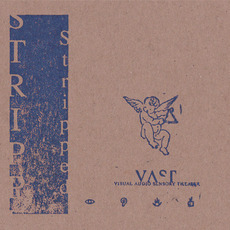 Stripped/Blue mp3 Album by VAST