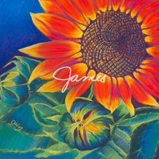 James mp3 Album by Lowercase Noises