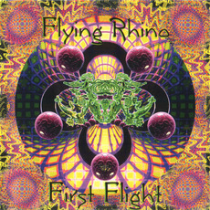 First Flight mp3 Compilation by Various Artists