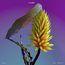 Say It mp3 Single by Flume
