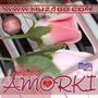 Disco Amorki, Vol.14