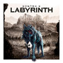 Labyrinth (Limitierte Fanbox Edition)