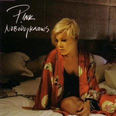 Nobody Knows mp3 Single by P!nk
