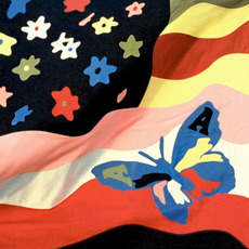Wildflower mp3 Album by The Avalanches