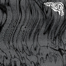 Hookworms (Re-Issue) mp3 Album by Hookworms
