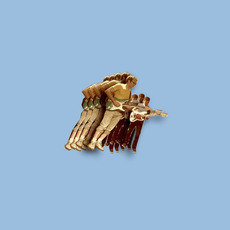 Fugue State mp3 Album by Vulfpeck
