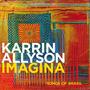 Imagina: Songs of Brazil