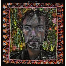 Painkiller mp3 Album by Steve Kilbey