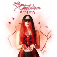 Destiny by Eteddian