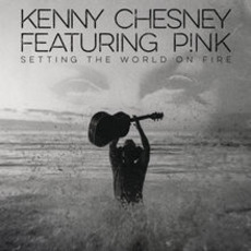 Setting the World on Fire mp3 Single by Kenny Chesney