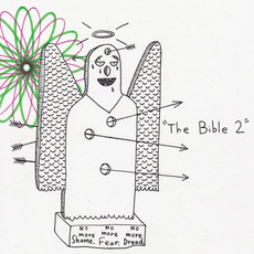 The Bible 2 mp3 Album by AJJ