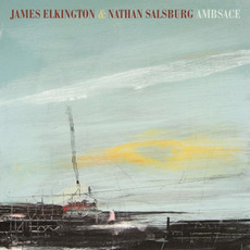 Ambsace mp3 Album by James Elkington & Nathan Salsburg