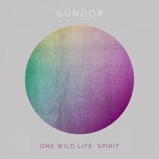 One Wild Life: Spirit mp3 Album by Gungor