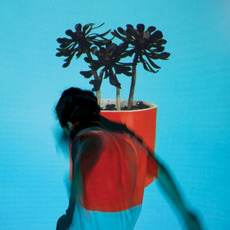 Sunlit Youth mp3 Album by Local Natives
