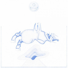 Ape in Pink Marble mp3 Album by Devendra Banhart