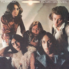Flamingo (Remastered) mp3 Album by Flamin' Groovies