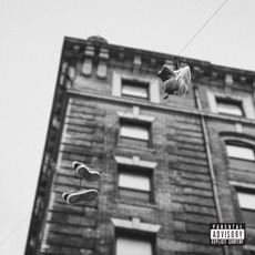 The Easy Truth mp3 Album by Apollo Brown & Skyzoo