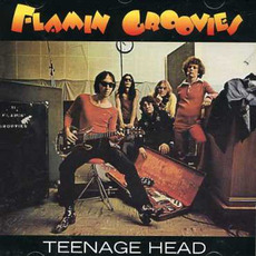 Teenage Head (Remastered) mp3 Album by Flamin' Groovies