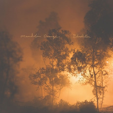 Blindfaller mp3 Album by Mandolin Orange