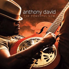 The Powerful Now mp3 Album by Anthony David
