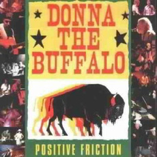 Positive Friction mp3 Album by Donna The Buffalo