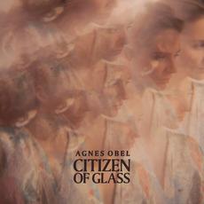 Citizen of Glass mp3 Album by Agnes Obel