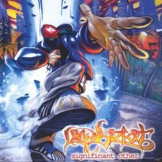 Significant Other (Clean Version) mp3 Album by Limp Bizkit