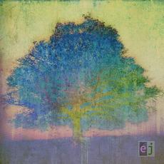 EJ mp3 Album by Eric Johnson