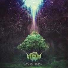 Illuminance mp3 Album by Virvum