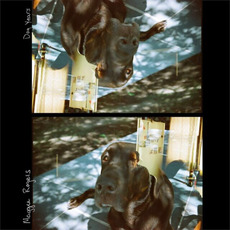 Dog Years mp3 Single by Maggie Rogers