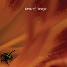 Emergent mp3 Album by Burnt Belief