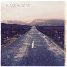 Landscapes mp3 Album by Black Woods
