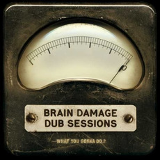 What You Gonna Do? mp3 Album by Brain Damage