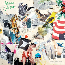 Goodbye Terrible Youth mp3 Album by American Wrestlers