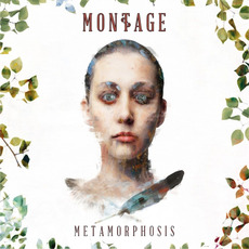 Metamorphosis mp3 Album by Montage