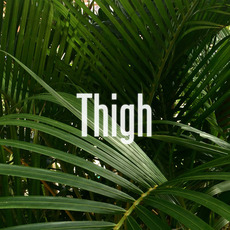 Thigh mp3 Album by Lisa Alma