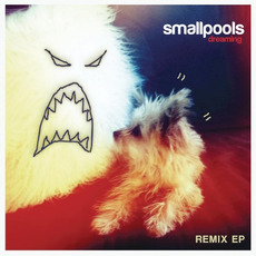 Dreaming Remix mp3 Remix by Smallpools