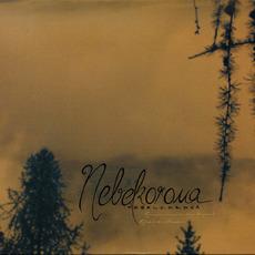 Reminiszenzen an das Morgenrot / Relikte des Abendrotes mp3 Album by Nebelkorona
