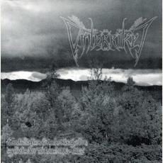Landschaftsmalerische Klangwelten synthetischer Tonkunst 1996-2002 mp3 Artist Compilation by Vinterriket